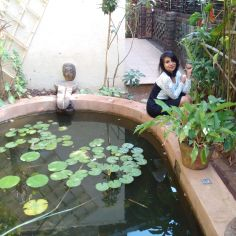 This little water structure had fishes in it! :D
